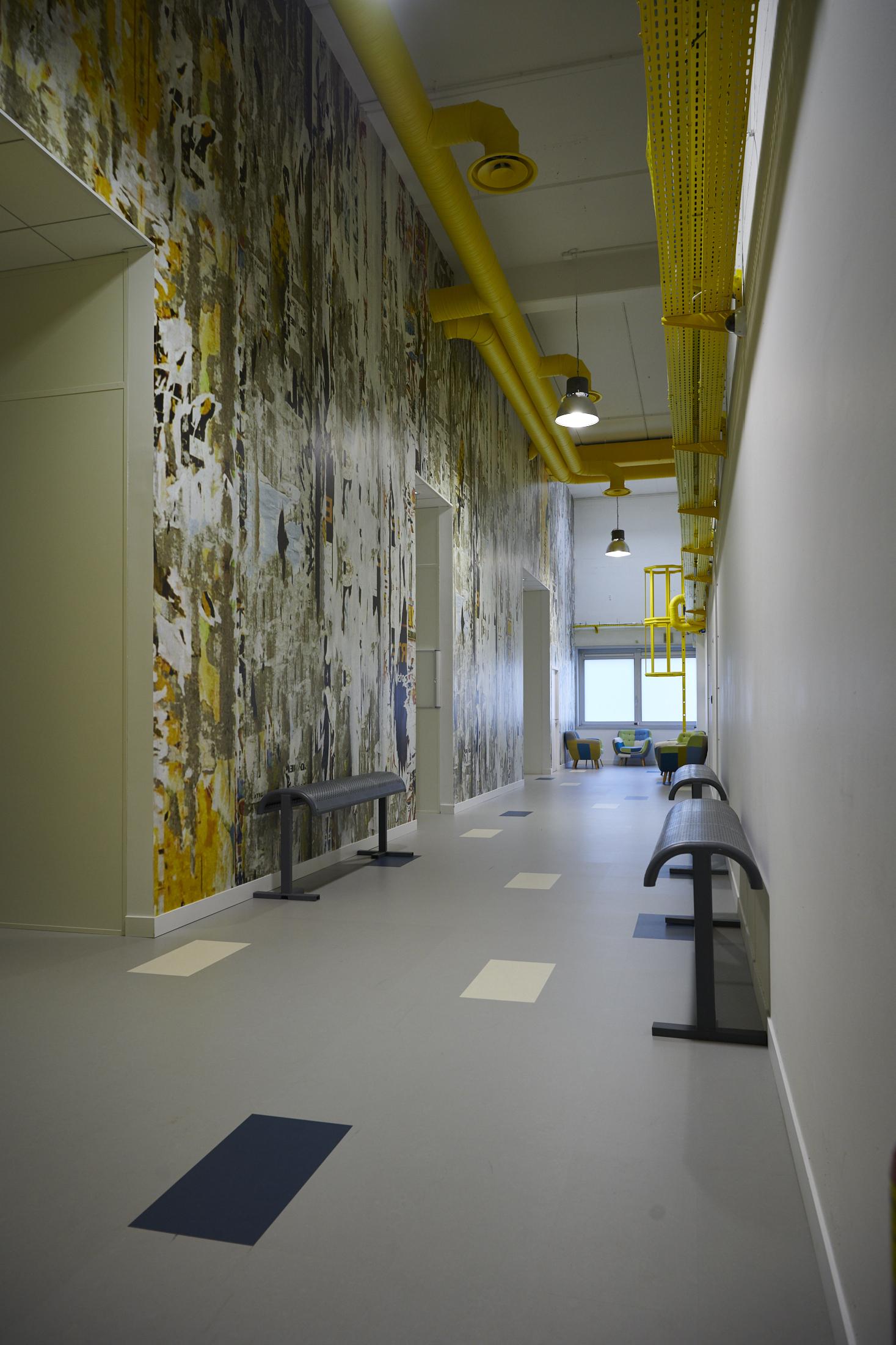 Octopus-papier peint sur mesure-sol PVC-banc métal-peinture