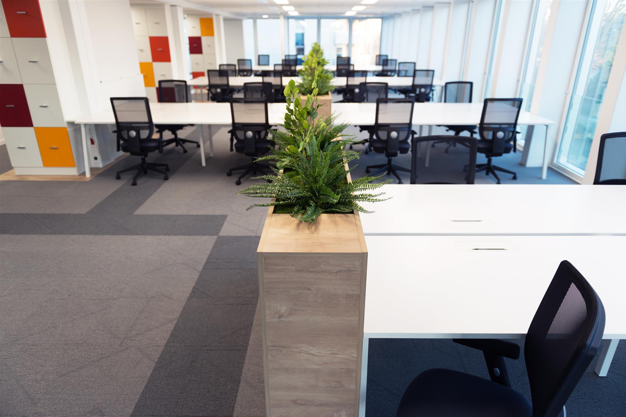 open space-bench-fauteuil-bac à plantes-séparation bureau-casiers